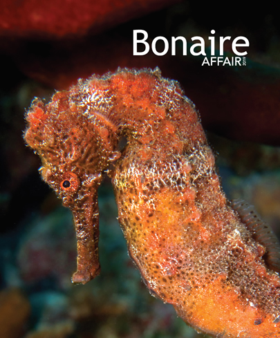 Bonaire Affair